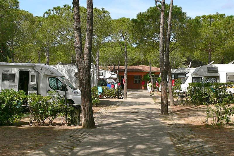 Elba Campeggio Ville degli Ulivi