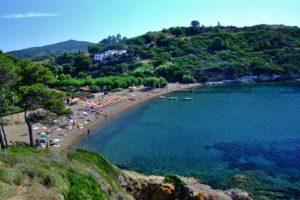Elba Campeggio Arrighi